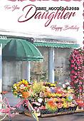 John, FLOWERS, BLUMEN, FLORES, paintings+++++,GBHSMOCC50-1208B,#F#, EVERYDAY