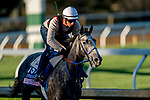 November 4, 2020: Crazy Beautiful, trained by trainer Kenneth G. McPeek, exercises in preparation for the Breeders' Cup Juvenile Fillies at Keeneland Racetrack in Lexington, Kentucky on November 4, 2020. Scott Serio/Eclipse Sportswire/Breeders Cup