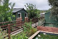 2018 08 23 Borth Wild Animal Kingdom, Wales, UK