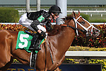 Big Guy Ian breaks his maiden with jockey Joseph Rocco Jr on board at  Gulfstream Park, Hallandale Beach, Florida 01-25-2014