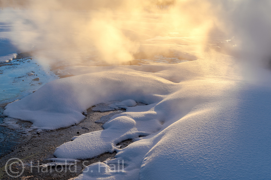 Steam from Yellowstone National Park hot springs glow in the late afternoon sunlight.