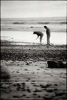 Couple collecting seashells along seashore<br />