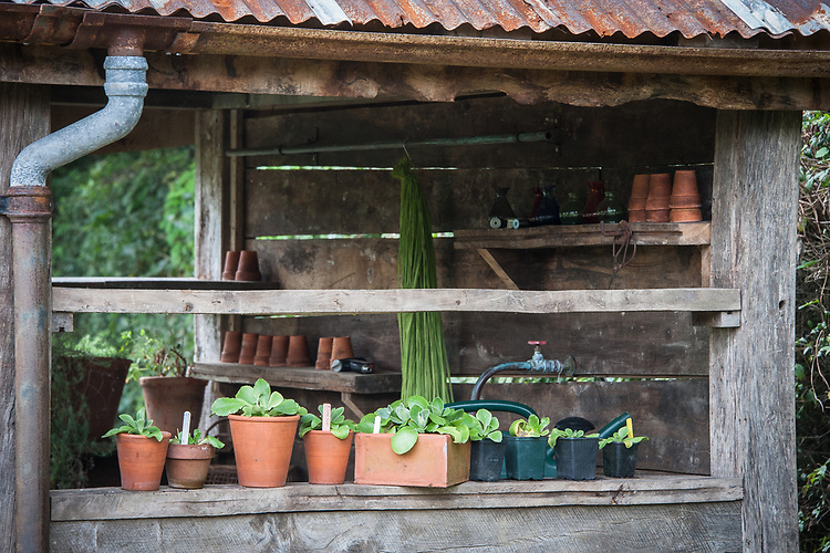 Potting shed, Perch Hill, late August.