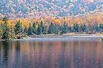 Fall foliage at Beaver Pond in Kinsman Notch, White Mountain National Forest, New Hampshire, USA