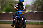 LOUISVILLE, KY - MAY 02: Chocolate Martini gallops in preparation for the Kentucky Oaks at Churchill Downs on May 2, 2018 in Louisville, Kentucky. (Photo by Alex Evers/Eclipse Sportswire/Getty Images)