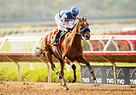 AUGUST 20, 2021: Private Mission with Flavien Prat wins the Grade 3 Torrey Pines at Del Mar Fairgrounds in Del Mar, California on August 20, 2021. Evers/Eclipse Sportswire/CSM