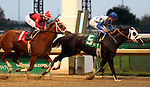 November 27, 2015 Super Saks (#5, jockey Robby Albarado) wins the 11th running of the Dream Supreme at Churchill Downs. Owner Robert C. Baker and William L. Mack, Trainer D. Wayne Lukas.  By Sky Mesa x Broadway Debut (Unbridled's Song.) ©Mary M. Meek/ESW/CSM