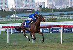 February 27, 2021:  Antoinette #3, ridden by Jose L. Ortiz pulls away to win the Very One Stakes (Grade 3) on the turf on Fountain of Youth Day at Gulfstream Park in Hallandale Beach, Florida. Liz Lamont/Eclipse Sportswire/CSM