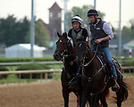 LOUISVILLE, KY - APRIL 20: Shagaf (Bernardini x Muhaawara, by Unbridled's Song) exits the track after exercising at Churchill Downs, Louisville KY. Owner Shadwell Stable, trainer Chad C. Brown (Photo by Mary M. Meek/Eclipse Sportswire/Getty Images)