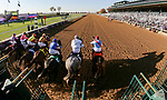 November 6, 2020: Horses race during the Juvenile Fillies on Breeders' Cup Championship Friday at Keeneland on November 6, 2020: in Lexington, Kentucky. Matt Wooley/Eclipse Sportswire/Breeders Cup/CSM