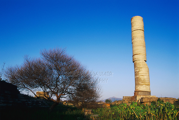 Temple of Hera, Samos, Greek Islands, Eastern Aegean Islands, Greece, May 1998