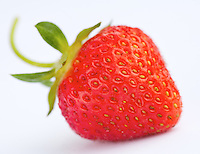 Single Strawberry with curled Stem on white background