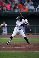 Idaho Falls Chukars third baseman Julio Gonzalez (12) at bat during a Pioneer League game against the Billings Mustangs at Melaleuca Field on August 22, 2018 in Idaho Falls, Idaho. The Idaho Falls Chukars defeated the Billings Mustangs by a score of 5-3. (Zachary Lucy/Four Seam Images)