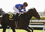 16 October 2010.  2 year old, Cane Garden Bay and Julien Leparoux win the 6th race.