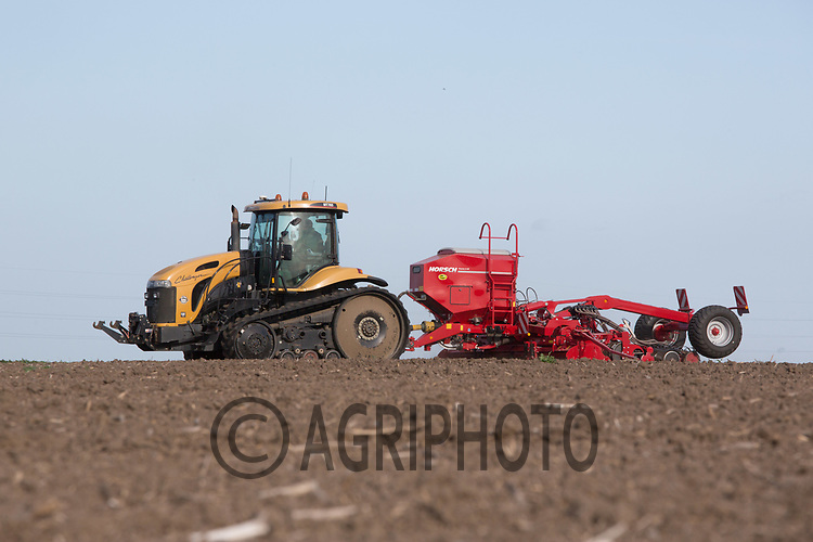 Drilling Winter Wheat in the Lincolnshire Fens<br /> Picture Tim Scrivener 07850 303986<br /> ….covering agriculture in the UK….