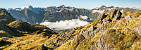 Views of Southern Alps with Mount Tasman and Aoraki, Mount Cook in background from Mt. Fox with Fox Glacier visible on left, Westland Tai Poutini National Park, West Coast, UNESCO World Heritage Area, New Zealand, NZ