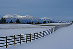 A wood fence stretches across a snowy Pasture on the Rathdrum Prairie <br /> with snow capped Rathdrum Mountain in the distance.