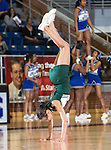 Lake Ridge vs. Summit Lady Jags