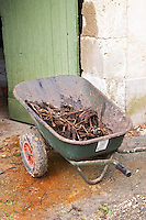 Mas de Perry, Mas Nicot. Terrasses de Larzac. Languedoc. A wheelbarrow filled with vine twig cuttings. France. Europe.