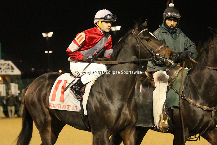 LOUISVILLE, KY -NOV 26: McCraken (jockey Brian J. Hernandez Jr.) in the post parade of the G2 Kentucky Jockey Club Stakes at Churchill Downs, Louisville, Kentucky. Owner Whitham Thoroughbreds LLC (Janis R. Whitham), trainer Ian R. Wilkes. By Ghostzapper x Ivory Empress, by Seeking the Gold. (Photo by Mary M. Meek/Eclipse Sportswire/Getty Images)