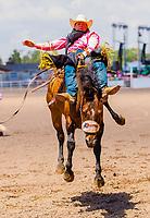 Usa,Wyoming, Cheyenne, saddle bronc riding at the Wrangler milion dollar tour PRCA rodeo  at Frontier days 2017