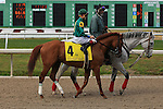 NEW ORLEANS, LA - FEBRUARY 20:<br /> Eagle #4 ridden by Brian Joseph Hernandez Jr in the post parade for the Mineshaft Handicap Stakes in the Louisiana Derby Preview Race Day at Fairgrounds Race Course on February 20,2016 in New Orleans, Louisiana. (Photo by Steve Dalmado/Eclipse Sportswire/Getty Images)