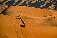 16 Benavides Luciano (arg), KTM, Red Bull KTM Factory Team, Moto, Bike, Motul, action during Stage 11 of the Dakar 2020  <br /> Rally Dakar <br /> 16/01/2020 <br /> Photo DPPI / Panoramic / Insidefoto