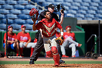Philadelphia Phillies catcher Freddy Francisco (6) follows the play in front of home plate umpire Mitch Leikam during a Florida Instructional League game against the New York Yankees on October 12, 2018 at Spectrum Field in Clearwater, Florida.  (Mike Janes/Four Seam Images)