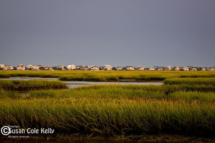 Tidal marsh on the Intracoastal Waterway, Murrels Inlet, SC, USA