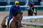 APRIL 30, 2015: Keen Ice, trained by Dale Romans, exercises in preparation for the 141st Kentucky Derby at Churchill Downs in Louisville, Kentucky. Jon Durr/ESW/Cal Sport Media