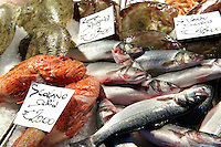 Fresh fish on fish stalls in the Rialto Market - Venice Italy