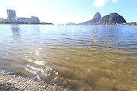 Rio de JaneirO (RJ), 19/05/2020 - Clima-Rio - Isolamento social e pandemia deixam baia de Guanabara limpa com águas claras e animais voltam a aparecer em Botafogo,  zona sul, nesta terça-feira  (19)