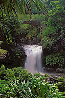Scenic tropical beauty of waterfall and bridge at the sven pools in Ohe'o Gulch in HALEAKALA NATIONAL PARK on Maui in Hawaii USA
