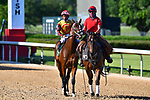 Basin (11) with jockey Ricardo Santana, Jr. aboard during the 1st division of the Arkansas Derby at Oaklawn Racing Casino Resort in Hot Springs, Arkansas on May 2, 2020. Ted McClenning/Eclipse Sportswire/CSM