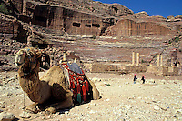 Camel resting while two Bedouins visit the ancient Roman Theater in Petra, Jordan.
