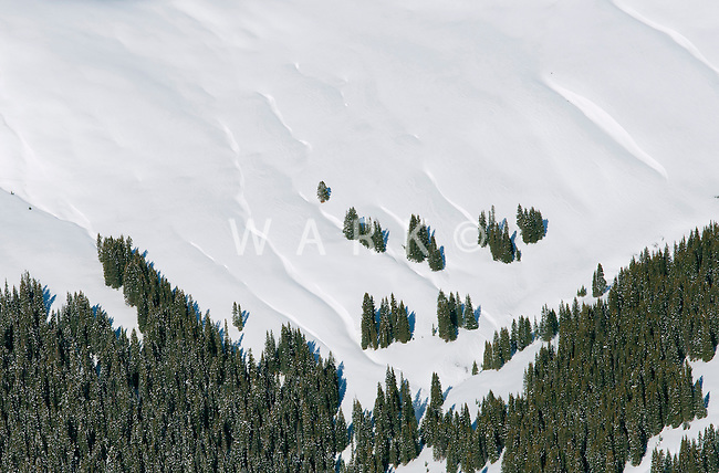 Colorado Rockies snow covered slope