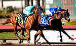 December 19, 2020: Spielberg with Flavien Prat defeats the Great One with Abel Cedillo to win the Los Alamitos Futurity at Los Alamitos Race Course in Cypress, California on December 19, 2020. Evers/Eclipse Sportswire/CSM