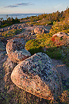 Granite rocks atop Cadillac Mountain with view of the Frenchman Bay, Acadia National Park, Maine, USA