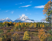 Fall Color in the Tetons National Park, Wyoming