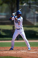 AZL Dodgers Lasorda Luis Rodriguez (17) at bat during an Arizona League game against the AZL Royals on July 4, 2019 at Camelback Ranch in Glendale, Arizona. The AZL Royals defeated the AZL Dodgers Lasorda 4-1. (Zachary Lucy/Four Seam Images)