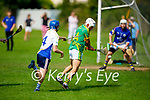 Lixnaw's Keltyn Molley about to shoot as Tralee Parnells  Conor Kirby tries to hook his effort in the Minor hurling championship quarter final.