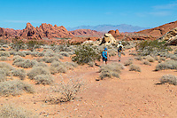 Valley of Fire, Nevada.  White Domes Trail.