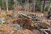 What looks to be a spring / water holding area at Hedgehog Camp, which was part of logging Camp 12, along the abandoned Beebe River Railroad (1917-1942) in Waterville Valley, New Hampshire.