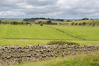 Cumbria, England, UK.  Modern Stone Wall Construction Delineating Farmers' Fields along Hadrian's Wall Footpath.
