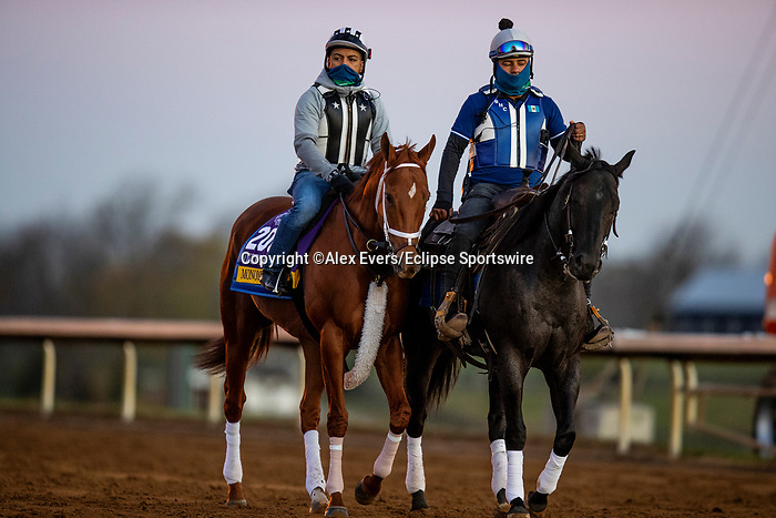 November 4, 2020: Monomoy Girl, trained by trainer Brad Cox, exercises in preparation for the Breeders' Cup Distaff at Keeneland Racetrack in Lexington, Kentucky on November 4, 2020. Alex Evers/Eclipse Sportswire/Breeders Cup