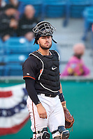 San Jose Giants catcher Joey Bart (9) during a California League game against the Visalia Rawhide on April 12, 2019 at San Jose Municipal Stadium in San Jose, California. Visalia defeated San Jose 6-2. (Zachary Lucy/Four Seam Images)