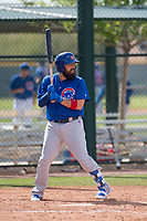 Chicago Cubs catcher Ali Solis (61) during a Minor League Spring Training game against the Colorado Rockies at Sloan Park on March 27, 2018 in Mesa, Arizona. (Zachary Lucy/Four Seam Images)