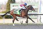 March 21, 2015: Dubai Sky and jockey Jose Lezcano win the Horseshoe Casino Spiral Stakes at Turfway Park for owners Three Chimneys Farm and Besilu Stable and trainer Bill Mott.
