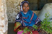 TANZANIA, Zanzibar, woman with Henna hand painting and henna plant , Lawsonia inermis,  from which   leaves the Henna colour is extracted / Frau mit Henna Handbemalung und Henna Pflanze aus deren Blaetter die Henna Farbe gewonnen wird