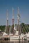 Schooner masts rise above the Mystic River, Mystic, CT